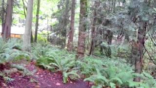 Bremerton (WA) United States  City pictures : Illahee State Park Campground - Bremerton, Washington