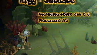 Koutoulou [Score 300] Placement N°1 : Nr perd ses balls