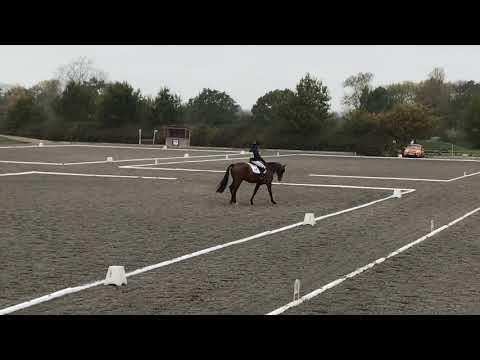 Dressage Aston BE100 October 2018 - 9th