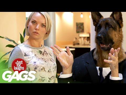The Dog Salesman Prank