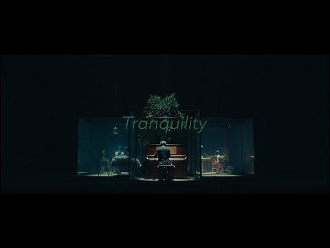 , title : 'SawanoHiroyuki[nZk]:Anly 『Tranquility』YouTube EDIT'