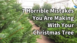 In this video Dave talks you through 7 Horrible Mistakes You Are Making With Your Christmas Tree and how to avoid them.Easy advice to make your Christmas tree last longer this Christmas.Visit http://www.glebegardencentre.co.uk for more information about Glebe Garden CentreLike us on Facebook - http://www.facebook.com/glebegcFollow us on Twitter - http://www.twitter.com/glebegc+1 us on Google - https://plus.google.com/b/103817263936258828598/+GlebeGardenCentre