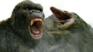 Nonton Kong Vs Skull Crawler   Fight Scene   Kong  Skull Island  2017  Movie Clip Hd Film Subtitle Indonesia Streaming Movie Download