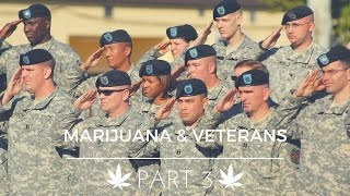 Marijuana & Veterans Part 3 by Marijuana Straight Talk