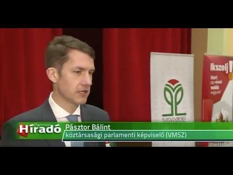Kelebián a fiatalok is fontosnak tartják a magyarországi választást-cover