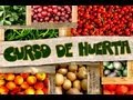 Aula 3 - Curso de Horta: O Plantio (Primeira parte)