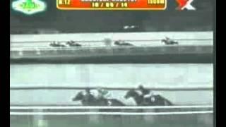 RACE 12 SHOW ME MAGIC 10/05/2014