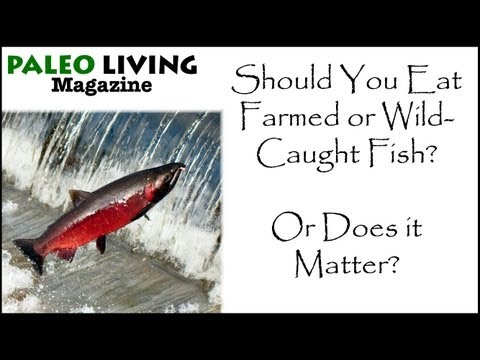 Warning!  When to Eat Farmed Fish Instead of Wild-Caught Fish