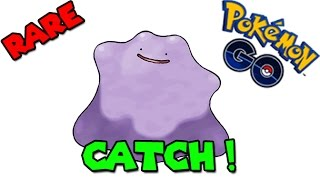 Catching DITTO ! (POKEMON GO DITTO CATCH) Cathing 547cp DITTO by catching Magikarp! Video recorded by my friend Pepchu! Check his channel here: https://www.y...