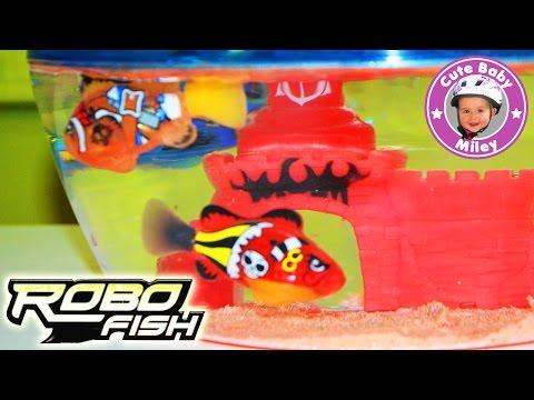 Robo Fish Pirate Aquarium und drei Piraten Fische unboxing und Test - Kinderkanal