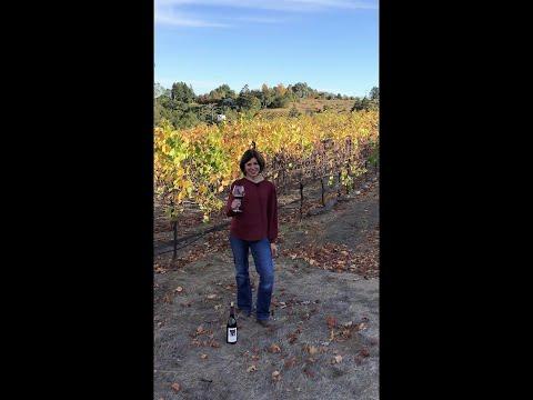 Tasting with Heidi: 2018 Warrens' Hill Pinot Noir
