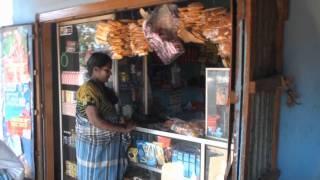 Mannar Sri Lanka  City pictures : Road to Mannar, Sri Lanka - Wilpattu National Park