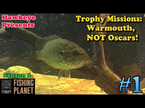 Fishing Planet #1 - S5 | Trophy Missions: Warmouth, NOT Oscars!