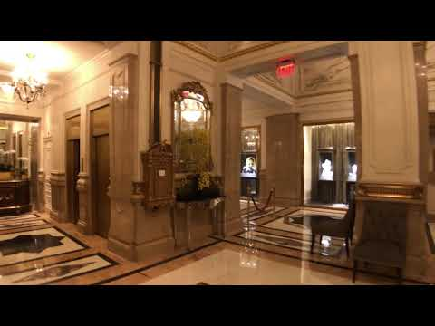 Our favorite hotel in NYC the stunning St. Regis Hotel - Take a look at he incredible lobby.