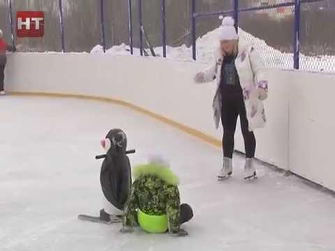 На катке у Ледового дворца прошли веселые старты, посвященные годовщине проведения Олимпийских игр в Сочи