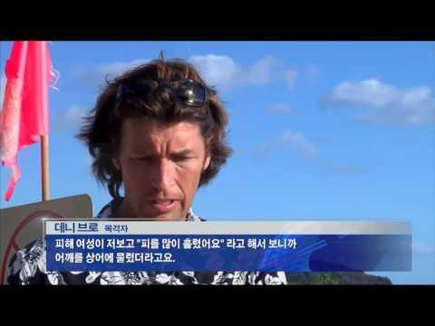 하와이 상어공격 비상 9.8.16 KBS America News