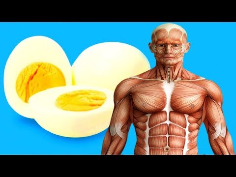 If You Eat 2 Eggs at Breakfast For a Month, This is What Happens to Your Body