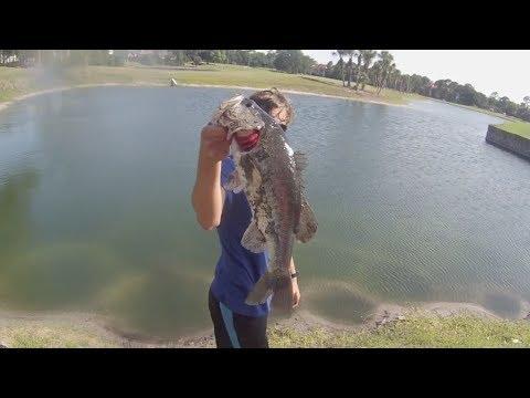Big Bass Pond Fishing!