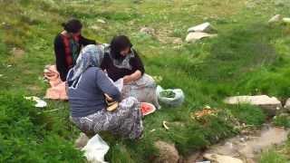 sivas zara nasır köyü kösedağ yaylası paşa çayırı full hd