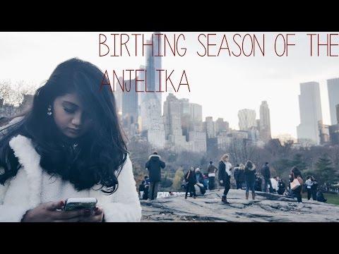 THE BIRTHING SEASON OF ANJELIKA