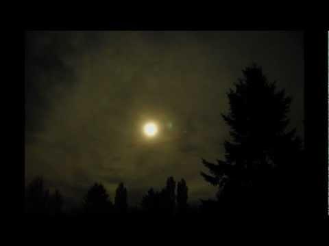 Sangre de Muerdago – Haunted Glow