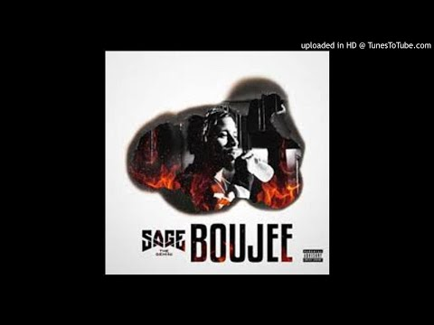 Sage The Gemini-boujee (clean)