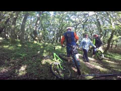 Exmoor Uplift 2