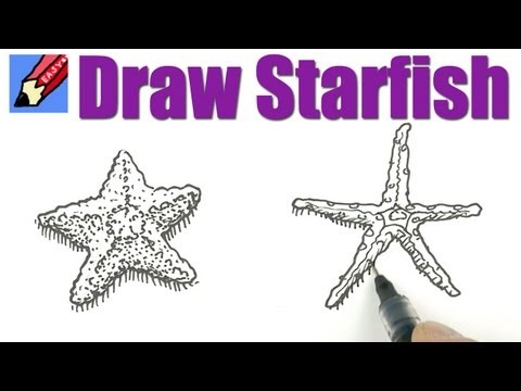 How to draw Starfish Real Easy