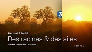 Des Racines et des Ailes: Sur les Rives de la Charente