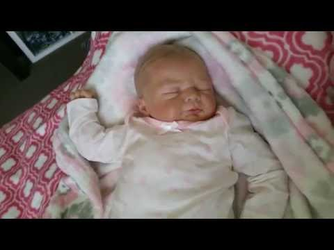 Video Christina'sReborns -  Reborn Baby Ivy and a few things from Harbour Town baby store! download in MP3, 3GP, MP4, WEBM, AVI, FLV January 2017