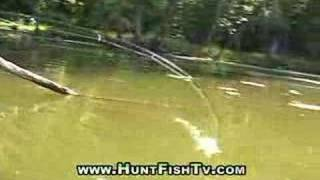 Bass Fishing 101 2013 YouTube video