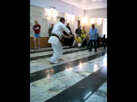 Первый международный турнир по киокушинкай каратэ