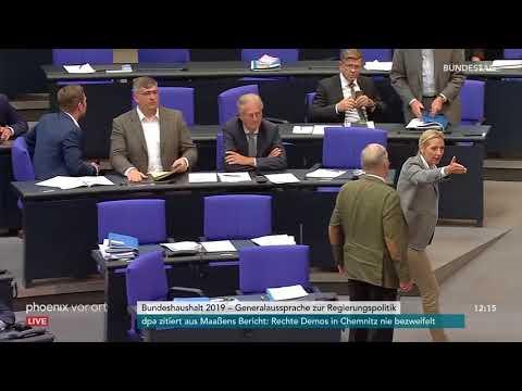 AfD-Fraktion verlässt Bundestag bei Rede von Johannes K ...