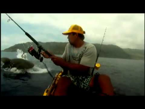 fisherman - An Oahu man fishing from a kayak had his catch stolen while at sea.