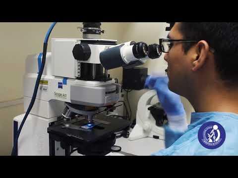 VIDEO SABER: Diagnóstico serológico del VIH