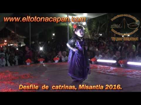 Desfile de catrinas, Misantla 2016