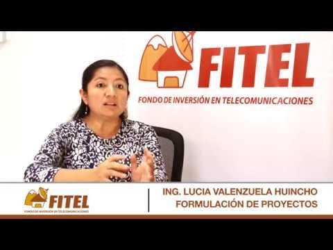 ING LUCIA VALENZUELA FORMULACION DE PROYECTOS