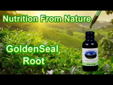 Golden Seal Root - Liquid Herbal Extract