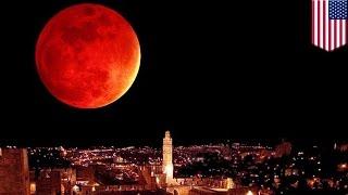 「スーパームーン」と皆既月食、33年ぶり同時出現