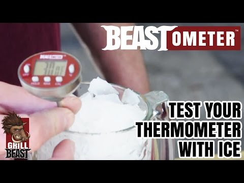 Test Your Thermometer with Ice the Right Way  - Grill Beast