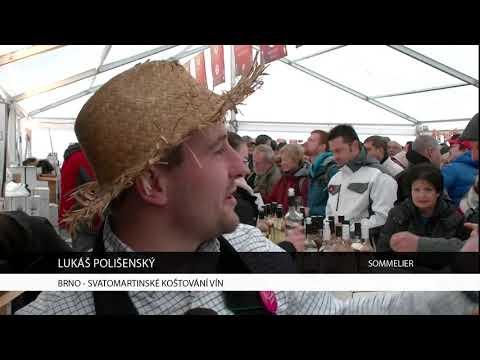 TV Brno 1: 14.11.2017 Svatomartinské koštování vín