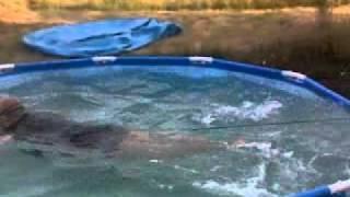 Rozmiar nie ma znaczenia gdy są chęci! Zajebisty patent na pływanie w małym basenie!