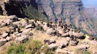 Ethiopia 2m40s