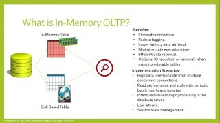 SQL Server In-Memory Internals (Farsi)