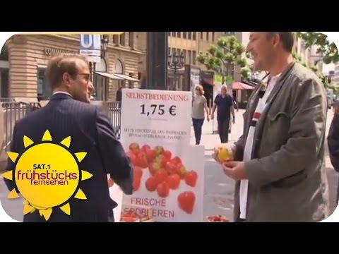 Erdbeer-Diebe   SAT.1 Frühstücksfernsehen