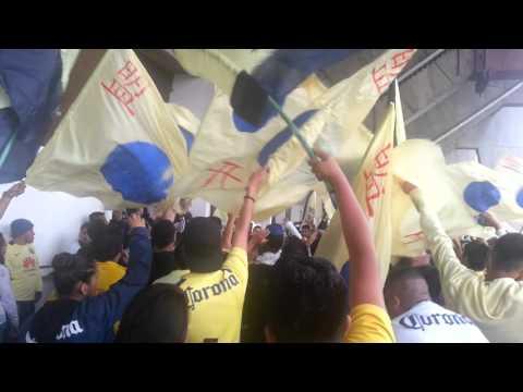 La afición azul crema en en estadio azteca - Ritual Del Kaoz - América