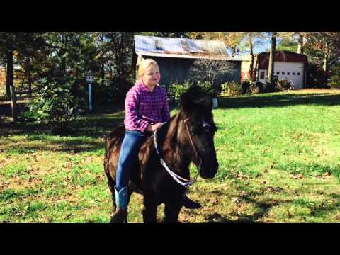 Horse Riding in North Carolina
