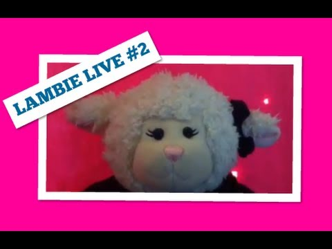 kondoot - Durning Lambie's second Kondoot show, it Adobe system crashed so the first half was not recorded. It's not Lambie's fault though. If you want to see the seco...