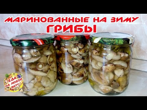 Рецепт грибов на зиму маслята