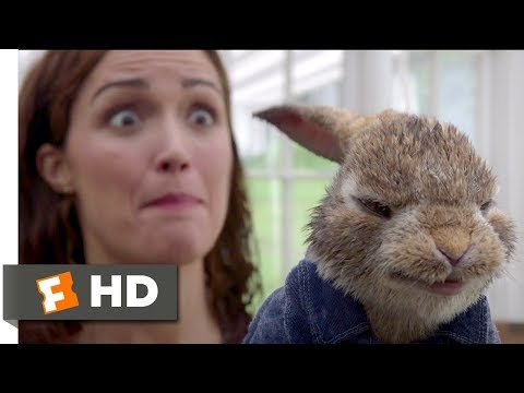 Peter Rabbit (2018) - Skirmish In The Studio Scene (5/10) | Movieclips